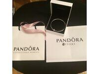 Pandora Limited Edition Silver Bangle
