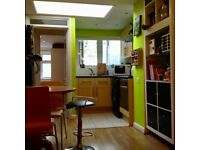 Beautiful 2 double-bed flat with garden in lively Clapton, Hackney