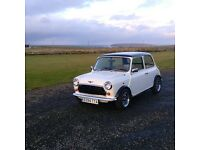 Classic mini Mayfair 1987 998cc