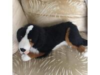 Cuddley Toy Dog
