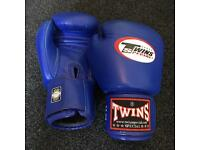 Twins Special 14oz boxing gloves blue