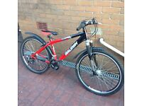 RALEIGH BOYS BICYCLE FOR SALE