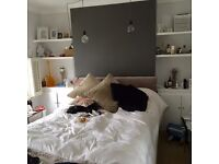 Large Double room to rent in Wandsworth Town with two New Zealand girls in 30s