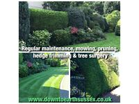 DOWN TO EARTH garden landscaping & maintenance - polite, tidy, reasonably priced & fully insured