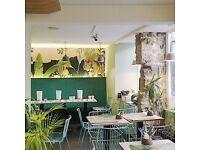 Kitchen Porter in a positive, vibrant cafe - full time, immediate start, fresh opportunity