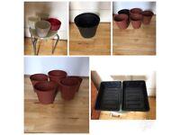 Plant pots (plastic and porcelain) , plant food