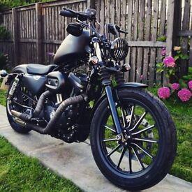 Harley Davidson xl 883 Iron