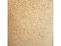 cream carpet offcut