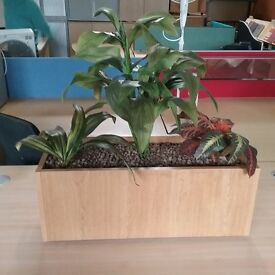 Mid-beech planter with false plant