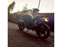 Ducati Monster M696 2009 Matte Black