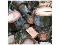 "Firewood logs for woodburner or firepit - ""Gumtree on Gumtree"" !"
