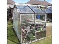 Gone PENDING collection GREENHOUSE 10 x 8 ft