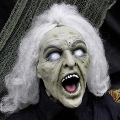 ANIMATED HEAD TURNING WITCH GROUND BREAKER HALLOWEEN PROP HAUNTED Life size - Halloween Ground
