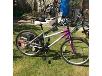 Mountain bike 18 x gears excellent condition