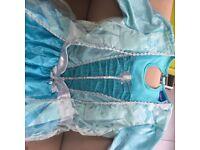 Disney dresses - frozen Elsa and Anna Age 9-10