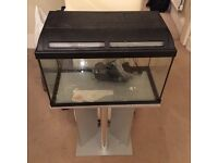 60 Fish Tank, Stand, Heater, Filter