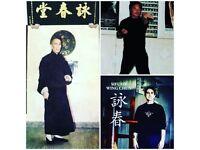Martial Arts Wing chun kuen training seminar