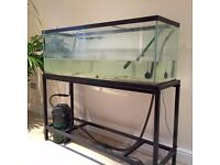 4ft aquarium with stand, top, light inc. (not shown), EHEIM Classic 350 filter and many accessories