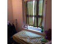 Nice and small room only 250 a month