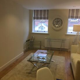 New fully furnished 2 bedroom apartment in Basingstoke town centre
