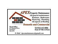 Plasterer/Plumber/Tiler/Bathroom fitter/Handyman