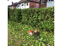Sthil long reach hedge cutter/trimmer