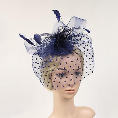 Vintage Lady Blue Fascinator Top Hat Wedding Church Birdcage Veil Headpiece