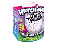 Hatchimals Pink Penguala Hatching Egg sold out out xmas toy, Christmas gift