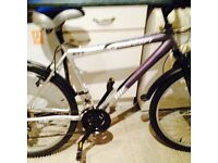 Mountain bikes for sale choice of 2