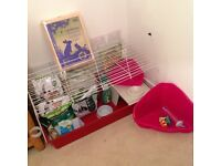 Indoor rabbit cage with all accessories