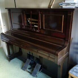 Steck Pianola