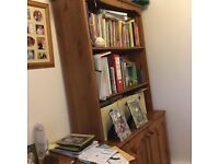 Bookshelves with cupboard