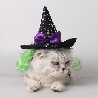 Charm Hexe / Zauberer Halloween Urlaub Kostüm Hut für kleine - Urlaub Katze Kostüm