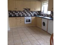 3 Bed House for Rent Annvale Green