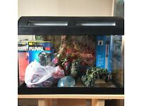 Small starter Fish tank and wooden stand with all accessories needed