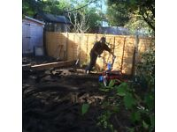 Profesional landscaper for all sort of projects