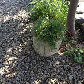 Circular ornate planter