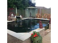 Pond Maintenance Service, Sick Or Dying Fish, Green Water, Filter Problems, Repairs, Upgrades, Koi