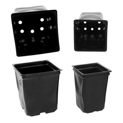 Bulk Flower Pots (Bulk Full Case (200 / 400) - Low Cost Coex Square (4