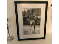 High Class Mohammed Ali Print in Wooden and Glass frame