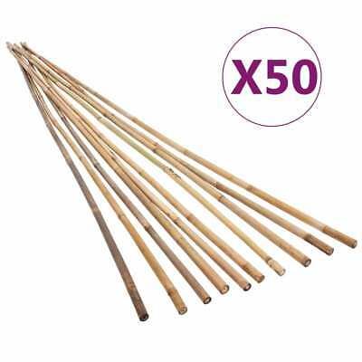 vidaXL 50x Garden Bamboo Stakes 150cm Patio Flower Plant Support Trellis Canes