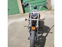 Harley Davidson 1600 street bob