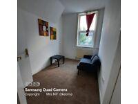 Refurbished large 1 bed room flat manor park