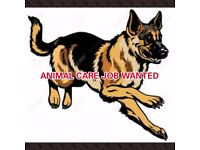 JOB WANTED: LOOKING FOR A CAREER IN ANIMAL CARE IN WIDNES CHESHIRE OR SURROUNDING AREAS.