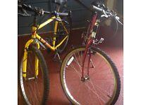 1 x male 1 x female bike for sale