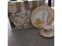 22 Piece fine porcelain tea set