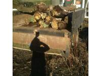 FREE TiP FOR WOOD TREES FOR LOGS BIG LOADS CAN PICK UP CALL 07889 42 28 28 EPPING ESSEX