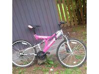 Ladies mountain bike.