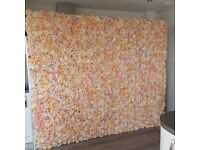 Champagne flower wall to hire
