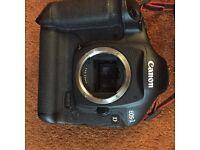 Canon eos1d mk111